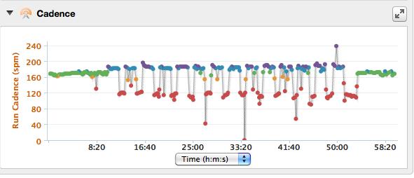 Purple = greater than 95 steps per minute. Blue = between 70-95 steps per minute.
